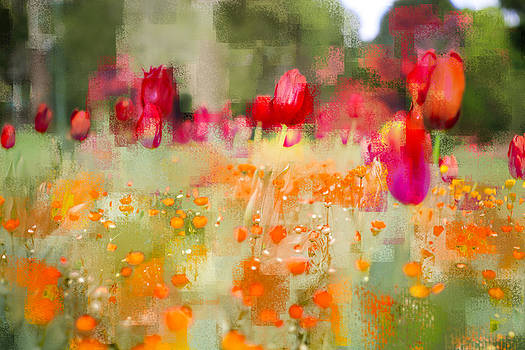 Tulips and Daisies by Linde Townsend
