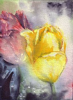 Tulips by Bonnie Fernandez