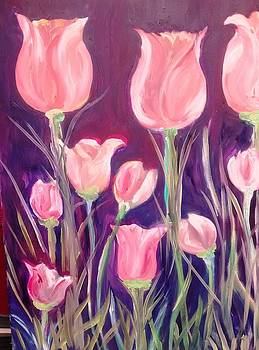 Patricia Taylor - Tulip Garden Pink and Bright