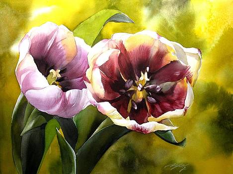 Alfred Ng - tulips in the sun