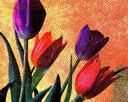 Ramneek Narang - Tulips
