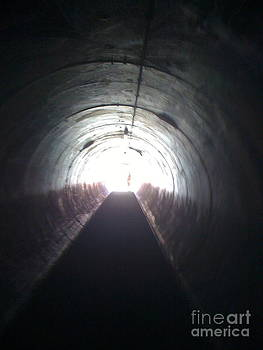 Tunnel to Big Day Out Auckland by Sherri Durrell