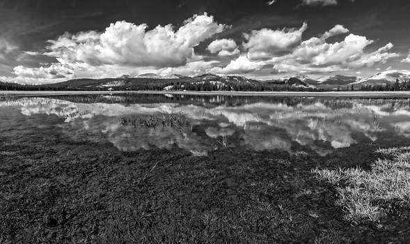Tuolumne Meadows Black and White by Bill Boehm