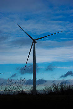 Turbine and Geese by Paul Wash