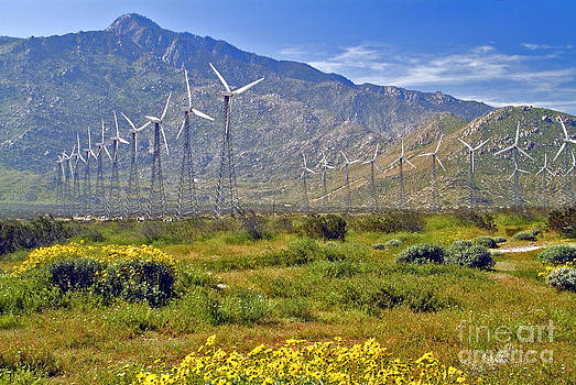 David  Zanzinger - Turbine Wind Farm San Gorgonio Pass Palm Springs CA