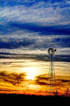 Turning Into The Sunset by David M Jones