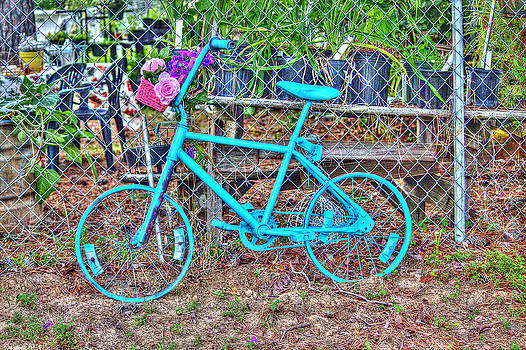Turquoise Bicycle by Lorri Crossno