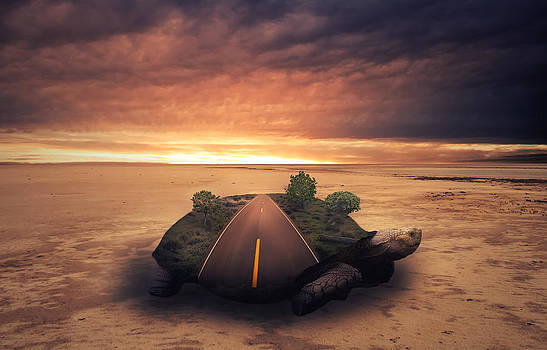 Turtle Island by Mindy Mcgregor