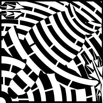 Yonatan Frimer Maze Artist - Turtle Maze