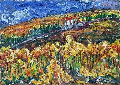 Tuscany 19 by Borislav Djukanovic