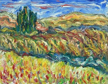 Tuscany 23 by Borislav Djukanovic
