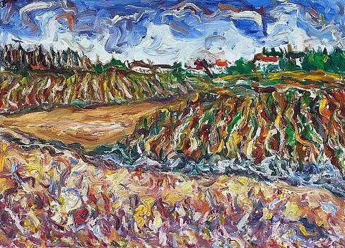 Tuscany 3  by Borislav Djukanovic