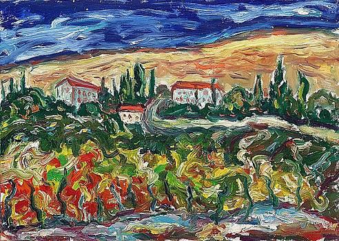 Tuscany 6 by Borislav Djukanovic