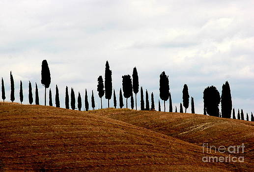 Tuscany hill by Arie Arik Chen