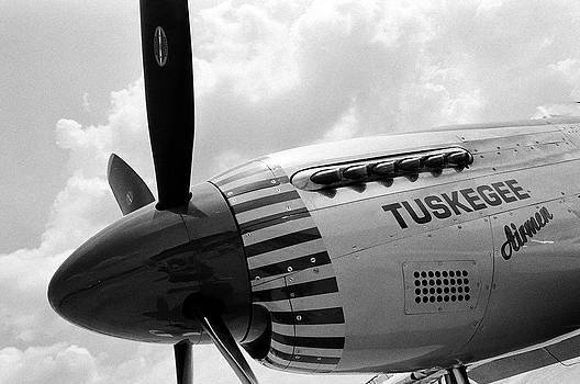 Tuskegee Airman by DM Werner