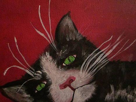 Tuxedo Cat by Cherie Sexsmith