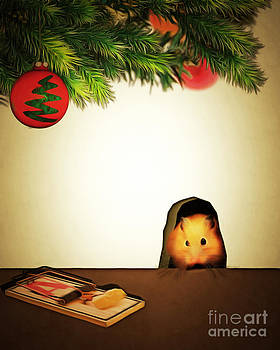 Wingsdomain Art and Photography - Twas The Night Before Christmas 20140919brunaille
