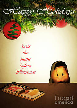 Wingsdomain Art and Photography - Twas The Night Before Christmas 20140919brunaille with text