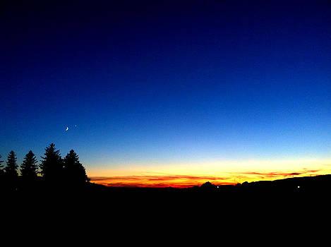 Twilight Allure by Tanya Renee Herb