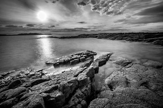 Twilight by Arianna Petrovan
