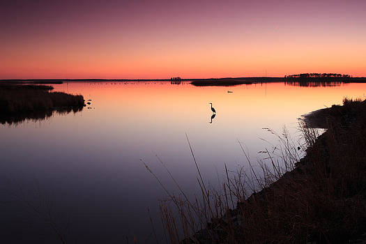 Twilight at Blackwater WLR by Jennifer Casey