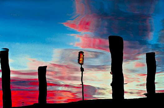 Twilight by Eleanor Ivins