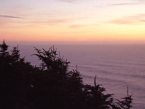 Twilight On The Coast by Yvette Pichette