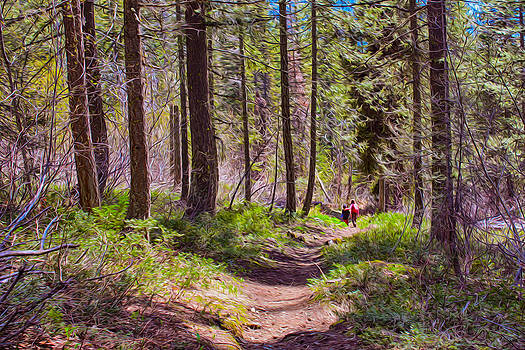 Omaste Witkowski - Twisp River Trail