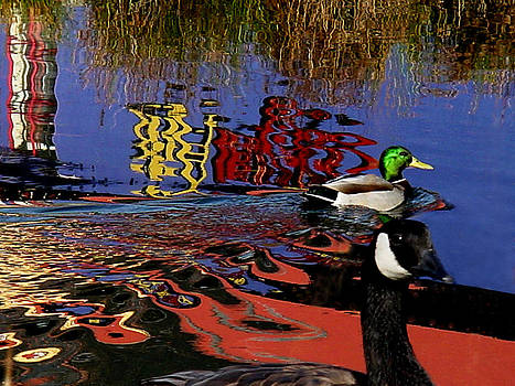 Two Birds in a Pond by Dirk Lightheart