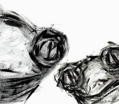 David Gordon - Two Frogs