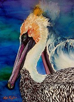 Two Pelicans by Lil Taylor