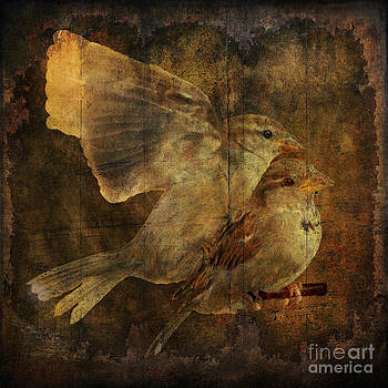 Two sparrows by Jim Wright