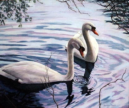 Two Swans a Swimming by Sandra Chase