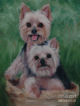 Two Yorkies by Pet Whimsy  Portraits