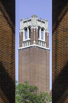 Lynn Palmer - UF Century Tower Framed View