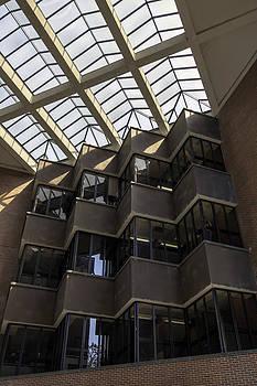 Lynn Palmer - Uf Marston Science Library Skylight and Accordian Wall