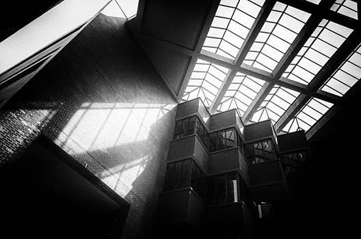 Lynn Palmer - Uf Marston Science Library Skylight In Bw