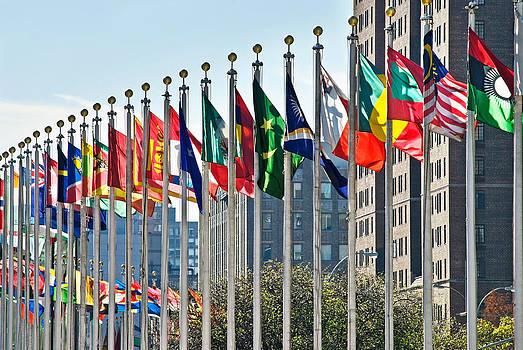 UN Flags by Andrew Kazmierski
