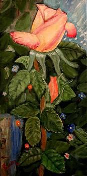 Una Rosa by Juan Sandin