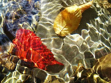 Under water by Jennifer Randall
