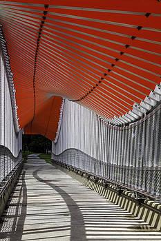 Lynn Palmer - Undulating Orange Wave