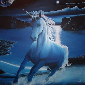 Unicorn by Lisbeth M Sandvik