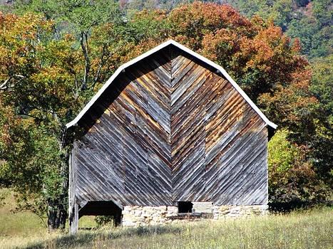 Unique Barn by Christine Bradley