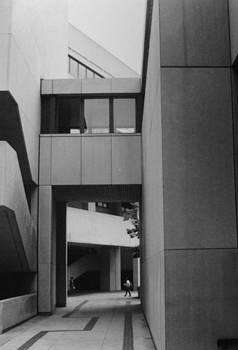 University of Pittsburgh Walkway by Joann Renner