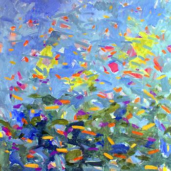 Untitled #14 by Steven Miller