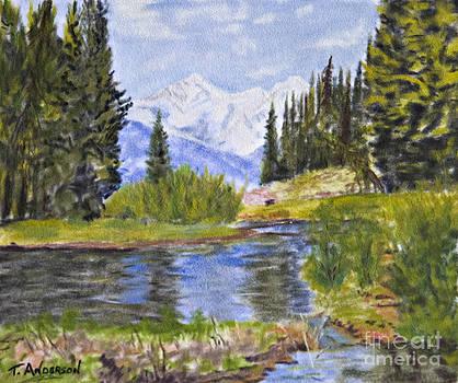 Colorado River Beginnings by Terry Anderson