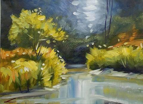 Up the Creek2 by Elena Sokolova