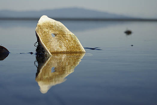 Marilyn Wilson - Upon Reflection