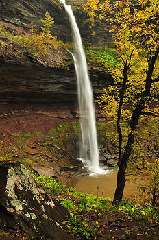 Upper Kaaterskill Falls Hidden View Portrait by Adam Paashaus