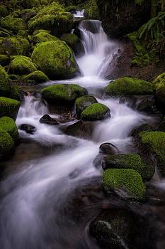 Upper Ruckel Creek by Brian Bonham